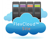 Flex Cloud Site